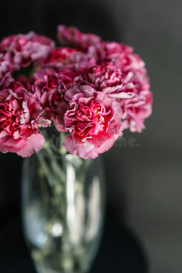 Piękny goździk kwitnie w wazie na stole Bukiet fiołek, purpury i różowy multicolor kwiat, Dekoracja obrazy stock