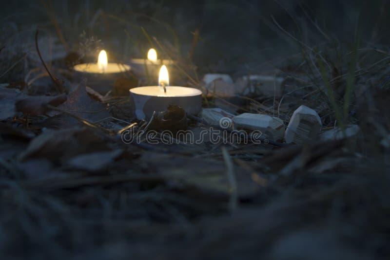 Piękny Halloween skład z runes i świeczkami na trawie w ciemnym jesień lasu rytuale zdjęcia royalty free