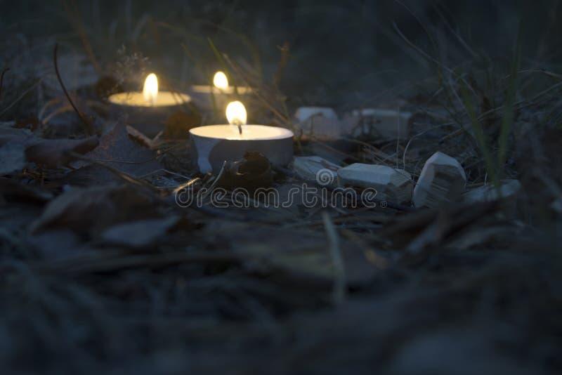 Piękny Halloween skład z runes i świeczkami na trawie w ciemnym jesień lasu rytuale zdjęcie stock