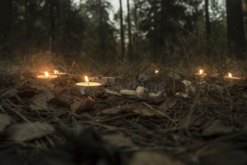 Piękny Halloween skład z runes i świeczkami na trawie w ciemnym jesień lasu rytuale fotografia royalty free