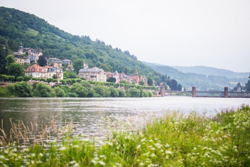 Piękny Heidelberg w ranku nad Rhine rzeką z natury scenerią zdjęcie stock