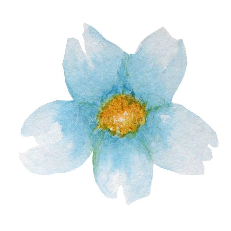Piękny jaskrawy błękitny akwarela kwiat pojedynczy bia?e t?o royalty ilustracja