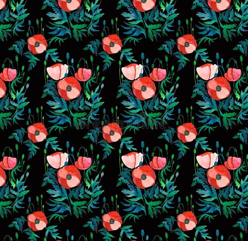 Piękny jaskrawy kwiecisty wzór czerwoni maczki z zielenią opuszcza i przewodzi na czarnej tło akwareli ilustracji