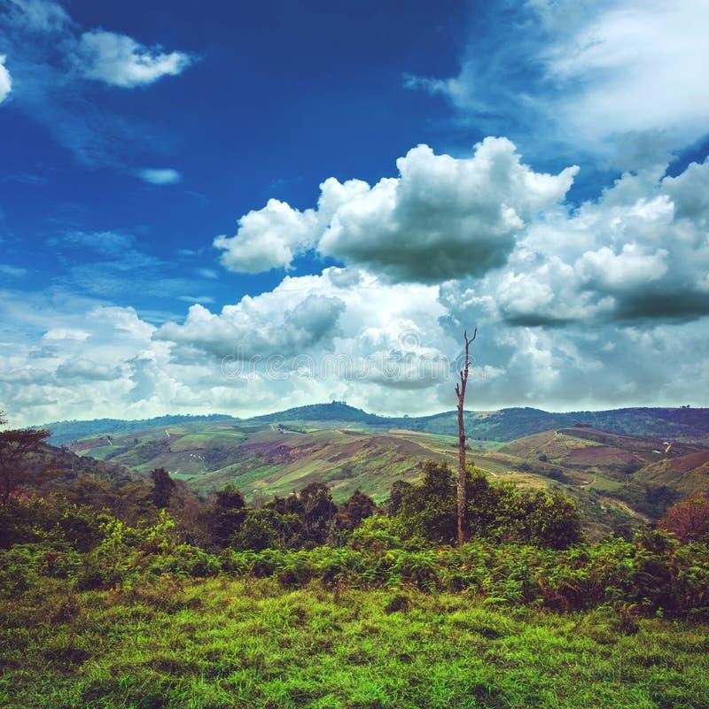 Piękny jaskrawy niebieskie niebo z chmurnym nad pasmo górskie zdjęcie stock
