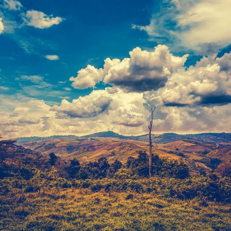 Piękny jaskrawy niebieskie niebo z chmurnym nad pasmo górskie fotografia stock