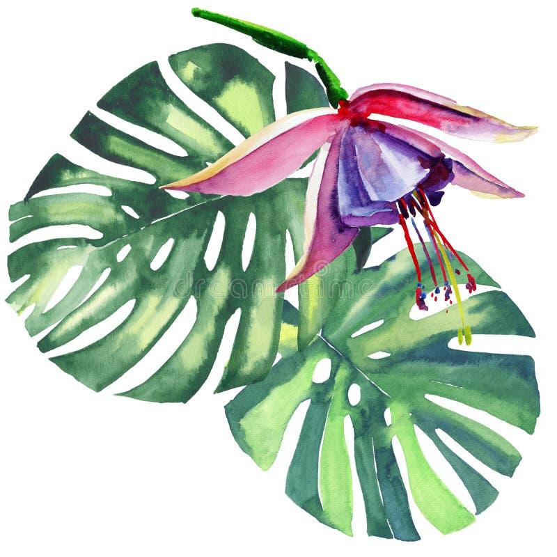 Piękny jaskrawy uroczy kolorowy tropikalny Hawaii lata kwiecisty ziołowy wzór tropikalny fiołek kwitnie orchidee i palma liście ilustracja wektor
