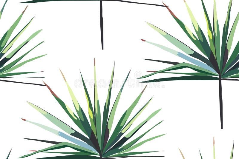 Piękny jaskrawy - zielonego tropikalnego cudownego Hawaii kwiecistego ziołowego lata horyzontalny bezszwowy wzór palma wektoru il ilustracja wektor