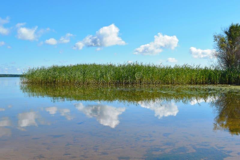 Piękny jasny niebieskie niebo z chmurami nad jeziorem obraz stock