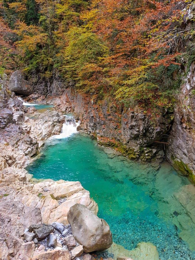 Piękny jesień krajobraz z zróżnicowanymi colours brązy, zielenie, pomarańcze i kolory żółci na liściach drzewa obok rzeki, zdjęcia royalty free