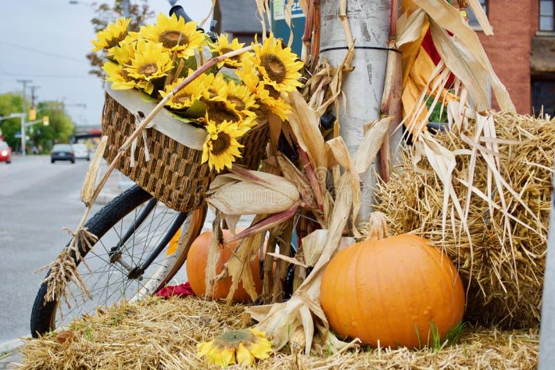 Piękny jesień temat obraz stock