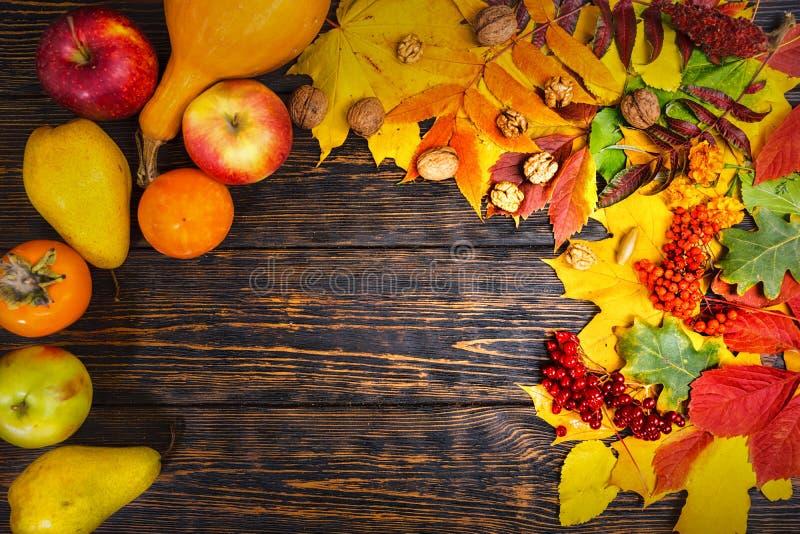 Piękny jesieni tło z żniwem na drewnianym biurku fotografia stock