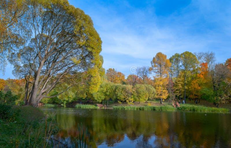 Piękny jesienny krajobraz z drzewami zdjęcie stock