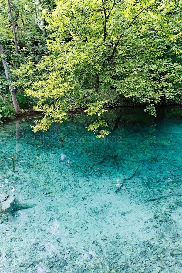 piękny jezioro obrazy stock