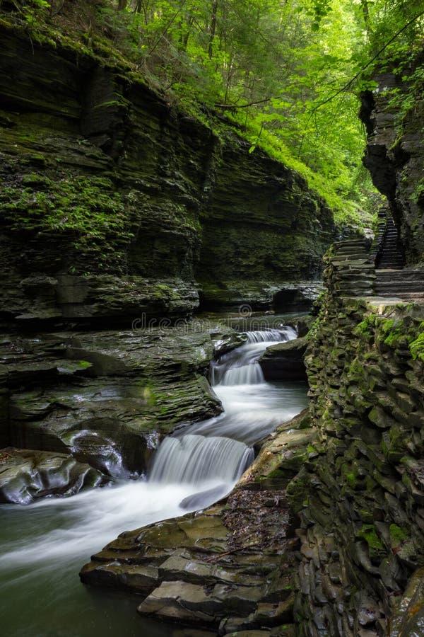 Piękny kaskady wodospadu przez Park stanowy Watkins Glen, Nowy Jork, Stany Zjednoczone Ameryki obrazy royalty free