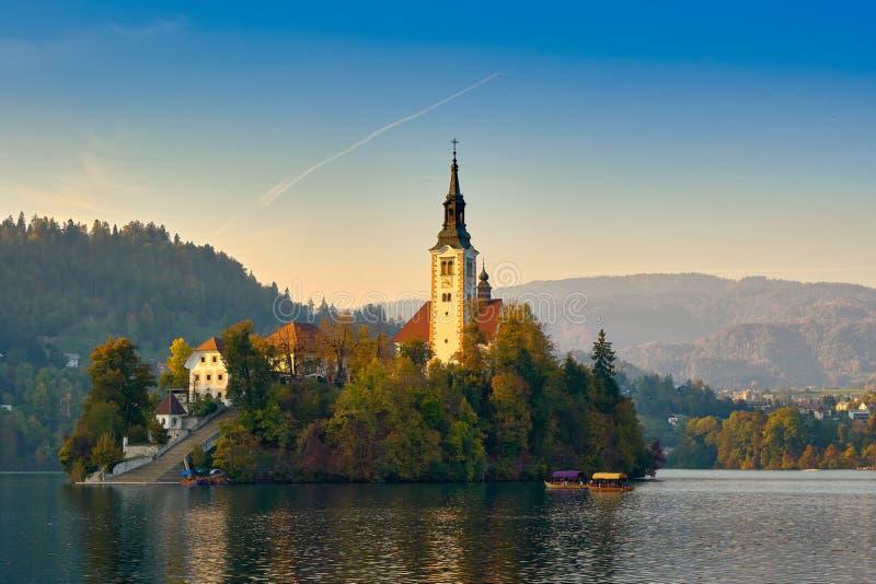 Piękny kościół na środku słoweńskiego jeziora Bled, Słowenia obraz royalty free