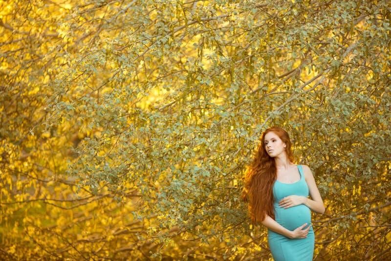 Piękny kobieta w ciąży w ogródzie zdjęcie stock