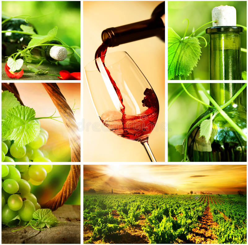 piękny kolażu winogron wino fotografia royalty free