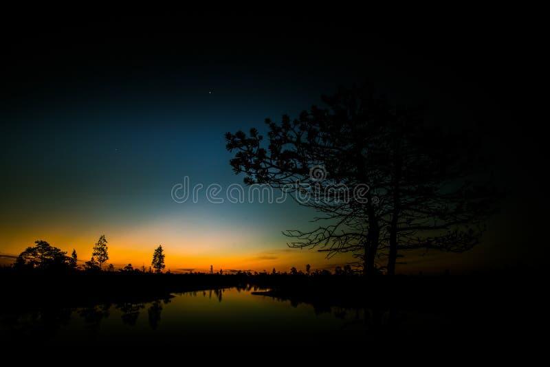 Piękny, kolorowy, artystyczny krajobraz bagno w wschodzie słońca, obraz stock