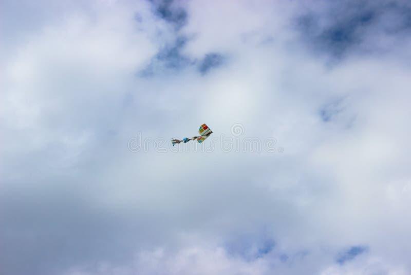 Piękny kolorowy kani latanie w błękitnym chmurnym niebie obrazy royalty free