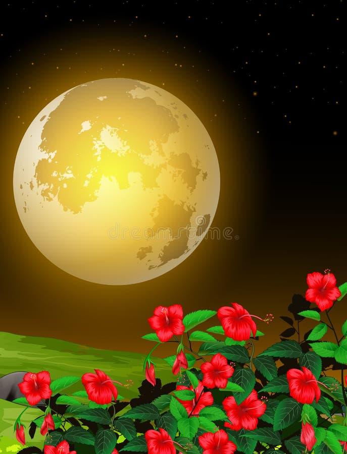 Piękny krajobraz Grass Field Night View z kreskówką Moonlight i Red Rose Flower ilustracji