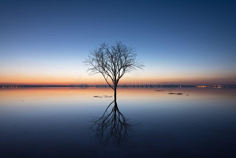 Piękny krajobraz jezioro przy kolorowym zmierzchem długo ekspozycji zdjęcia royalty free