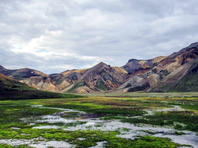 Piękny krajobraz Landmannalaugar geotermiczny teren z rzeką, zielonej trawy polem i rhyolite górami, Iceland obrazy stock