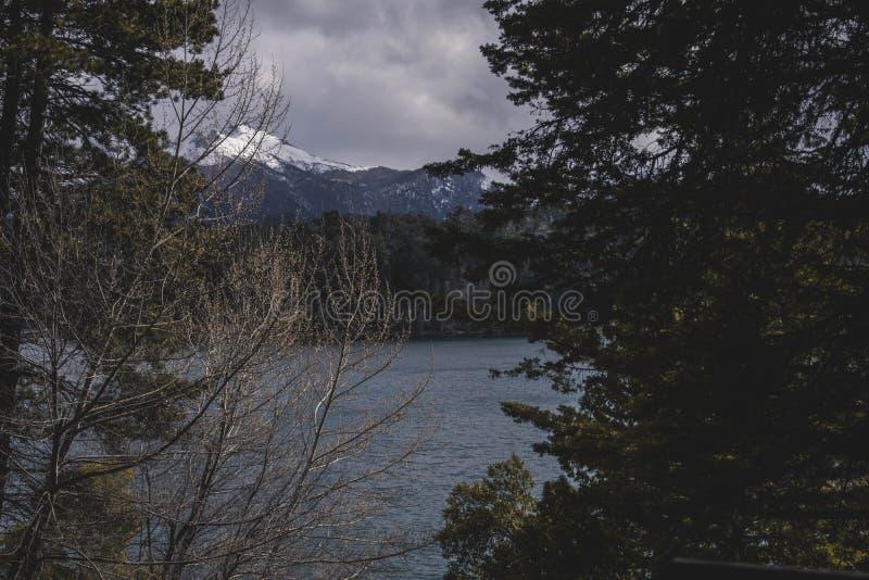 Piękny krajobraz lasowy teren w zimie obraz stock