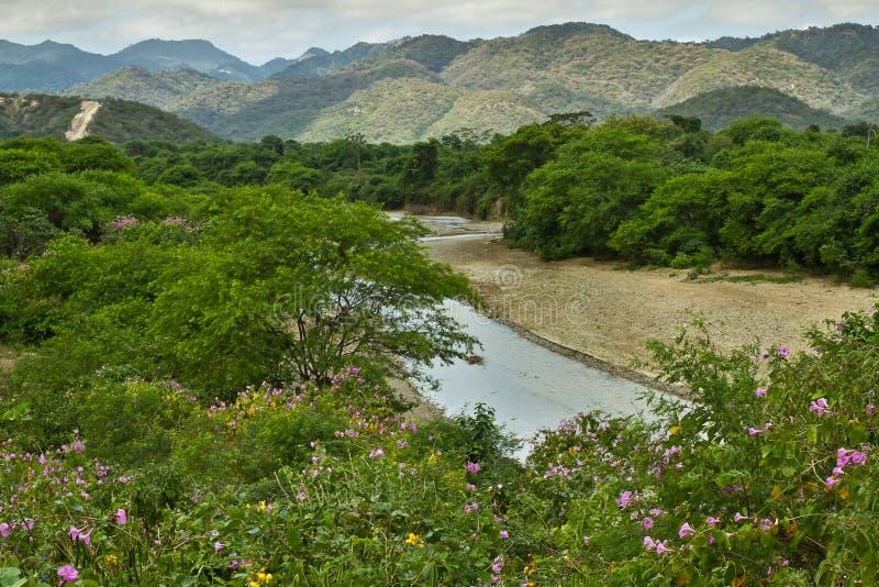 Piękny krajobraz Machalilla park narodowy wewnątrz obraz stock