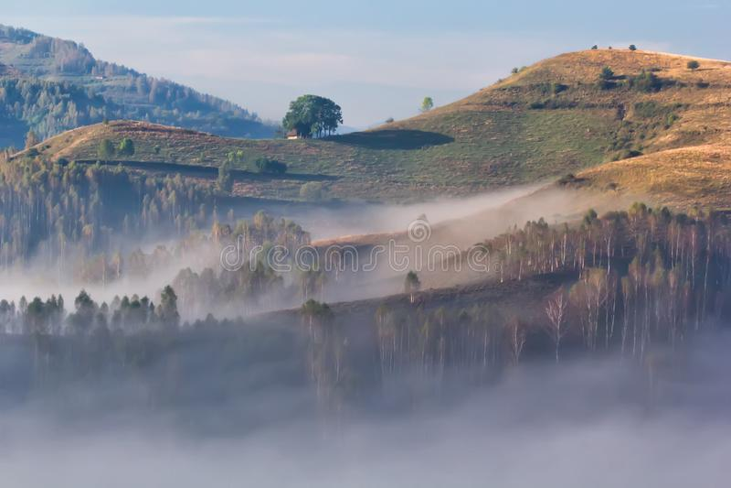 Piękny krajobraz mgłowy ranek z starym domem i drzewami obrazy royalty free