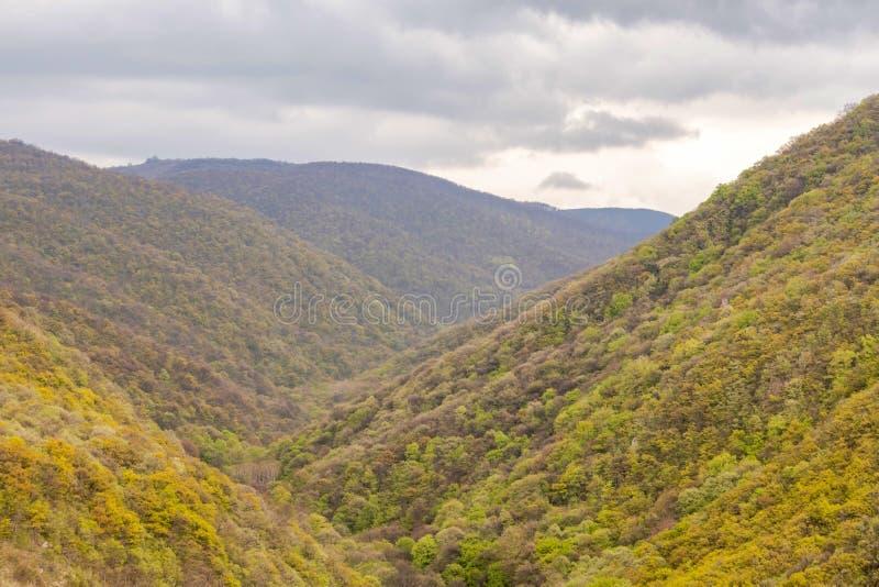 Piękny krajobraz, możne wysokie góry w zielonych drzewach i popielaty niebo w ciemnych chmurach, zdjęcie stock