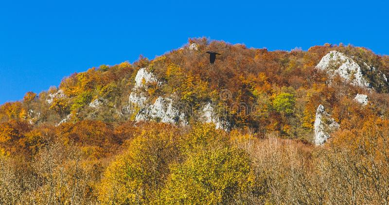 Piękny krajobraz podczas jesień czasu pełno kolory i uroczy niebieskie niebo fotografia stock