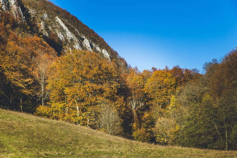Piękny krajobraz podczas jesień czasu pełno kolory i uroczy niebieskie niebo zdjęcia stock