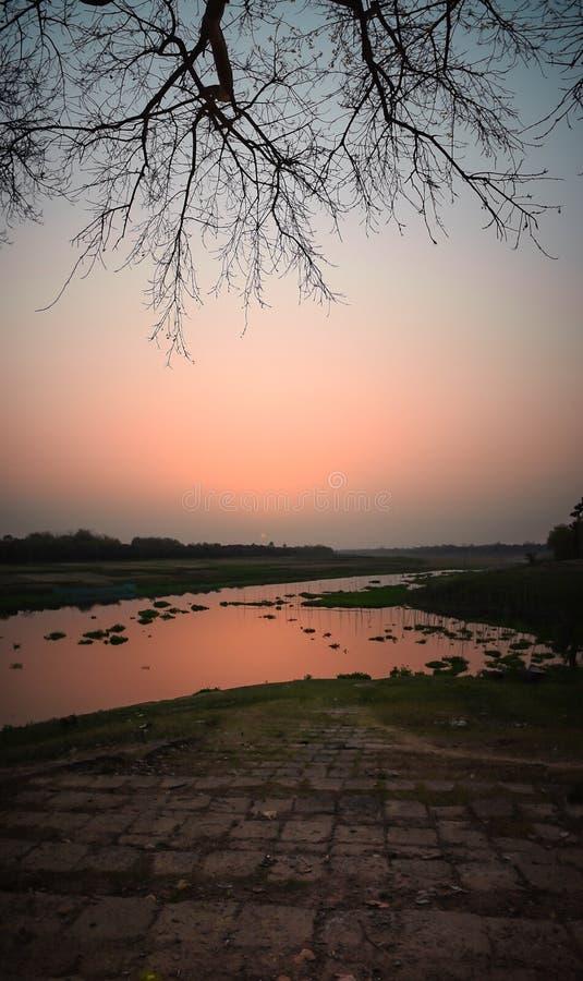 Piękny krajobraz przy popołudniem obok brzeg rzekiego podczas złotych godzin obraz royalty free