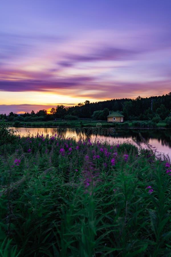 Piękny krajobraz przy zmierzchem z purpurowym niebem, kwiaty i mały dom zdjęcie stock
