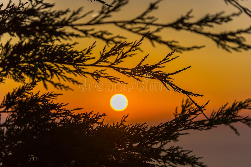 Piękny krajobraz w lecie w Grecja obraz royalty free