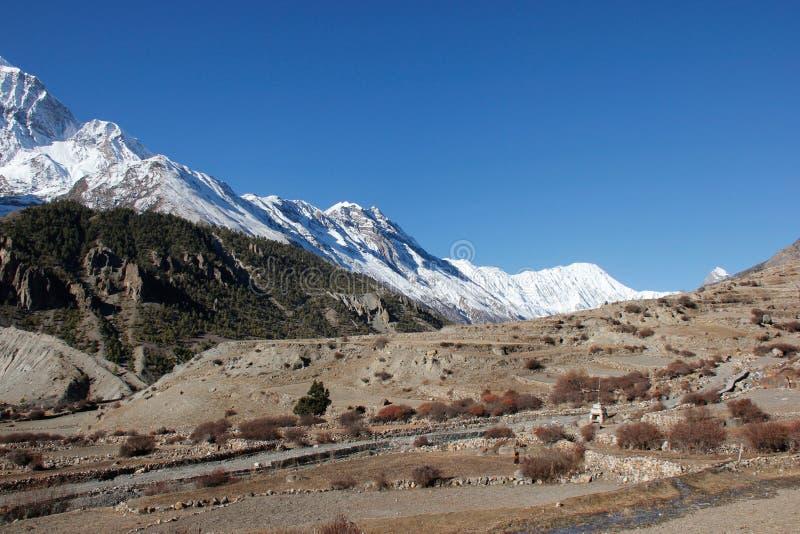 Piękny krajobraz w lecie w himalaje górach obraz royalty free