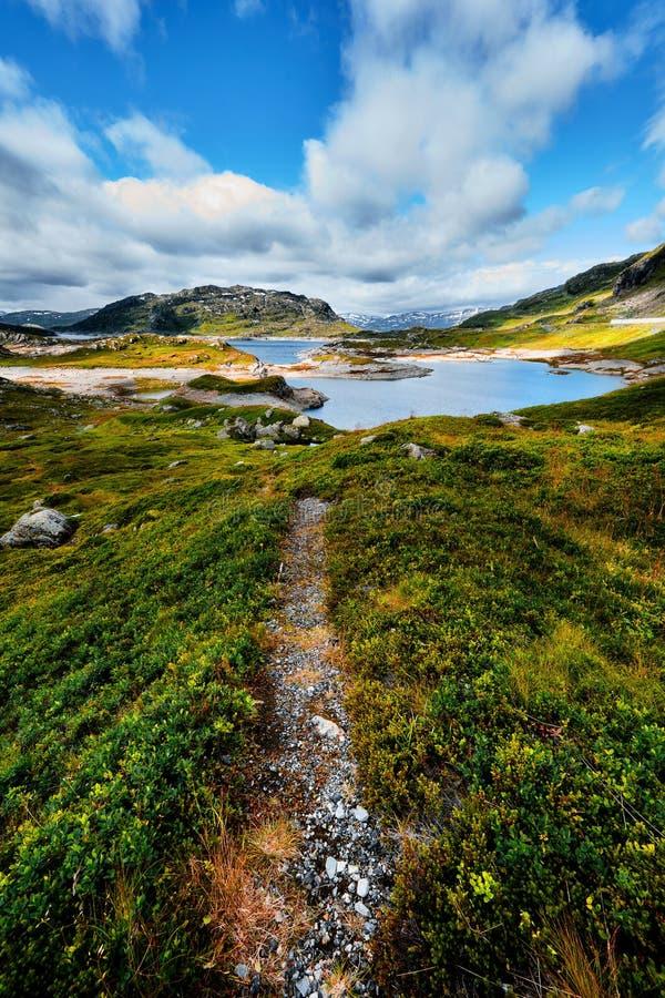 Piękny krajobraz w Norwegia z wycieczkuje śladem prowadzi przez doliny z zieloną trawą i kamieniami do błękitnego jeziora w mo zdjęcia royalty free
