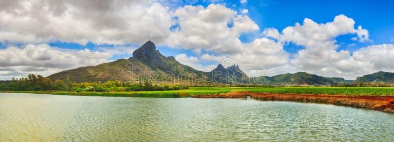 Piękny krajobraz Widok trzcina cukrowa i góry Mauritiu obrazy royalty free