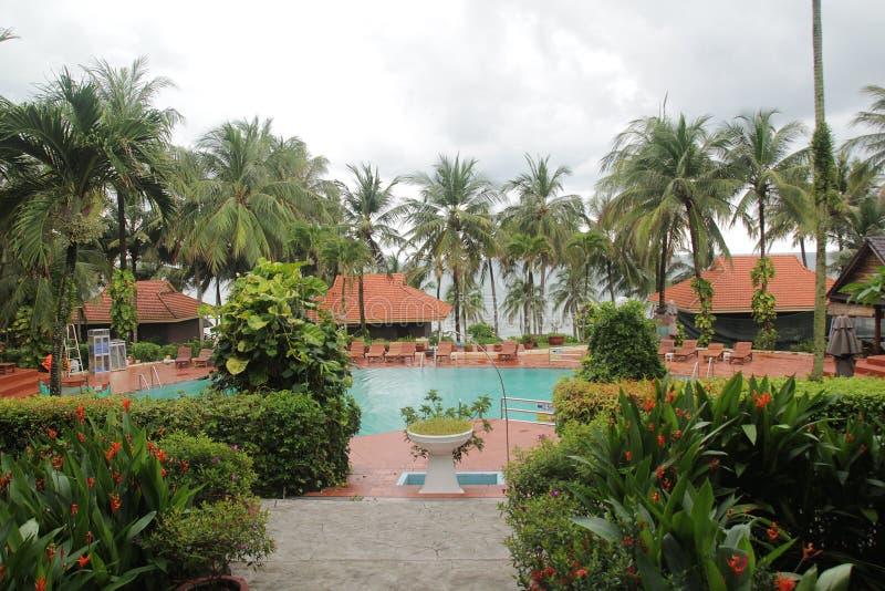 Piękny krajobraz z basenem wokoło i kokosowymi drzewami zdjęcie royalty free