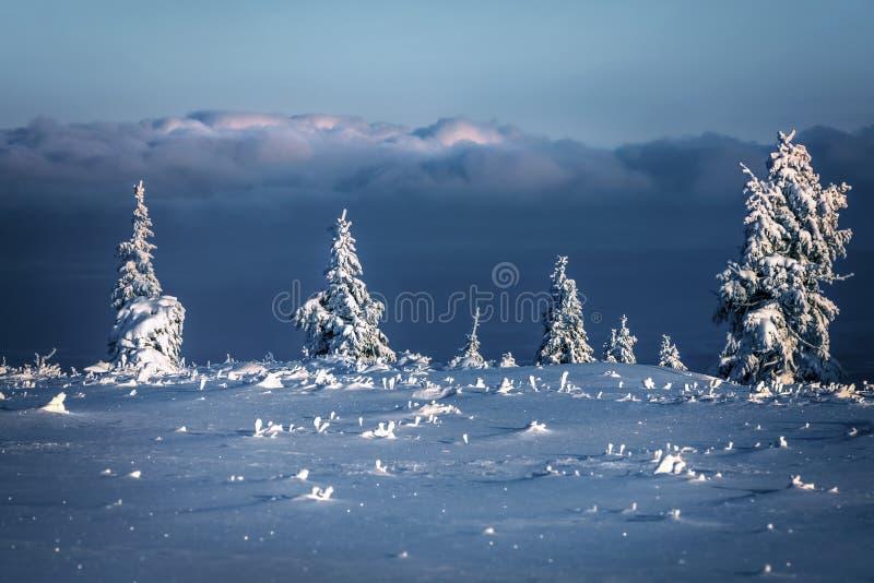 Piękny krajobraz zimowy obrazy stock