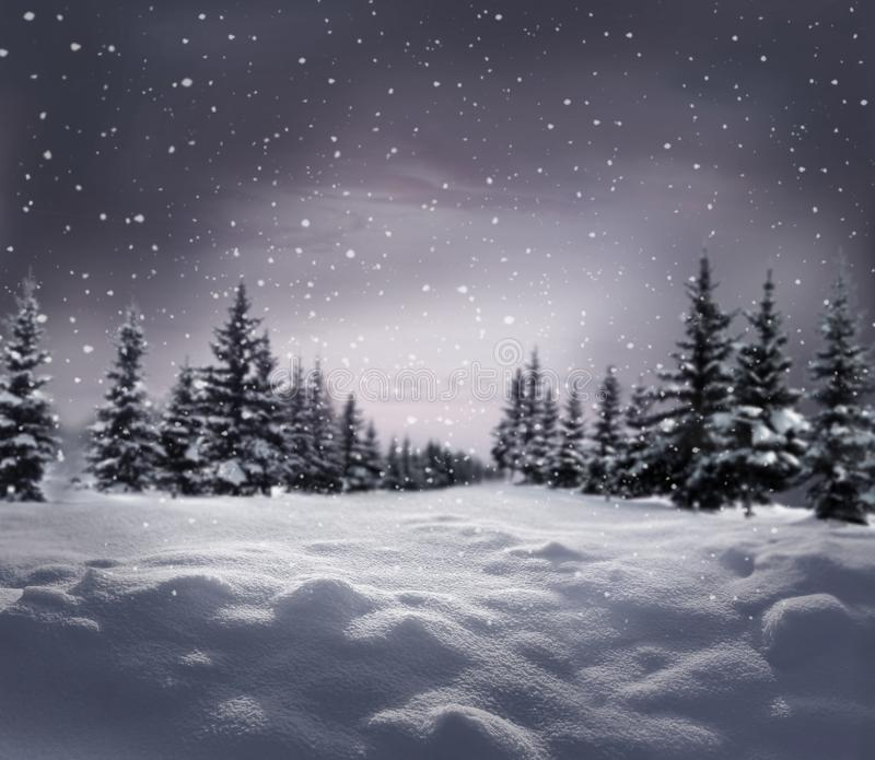 Piękny krajobraz zimowy z pokrytymi śniegiem drzewami Szczęśliwego noworocznego powitania z kopią zdjęcia royalty free