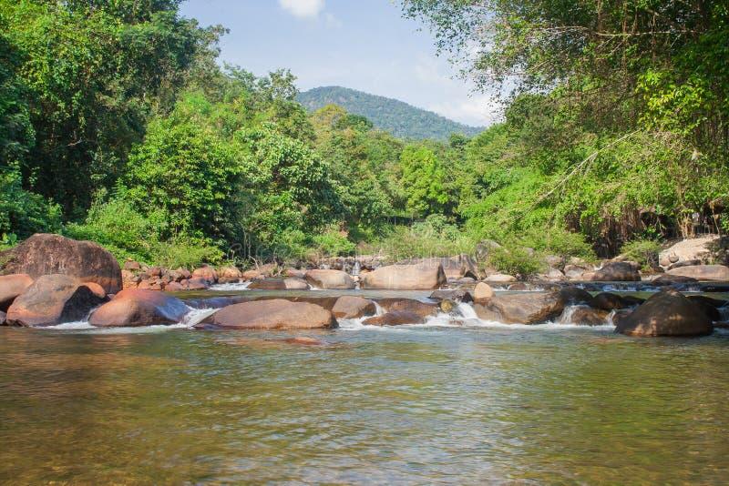 Piękny krajobrazowy widok mała siklawa w rzece z wodnym strumienia spływaniem przez kamienia i zieleni drzew w tle zdjęcie stock