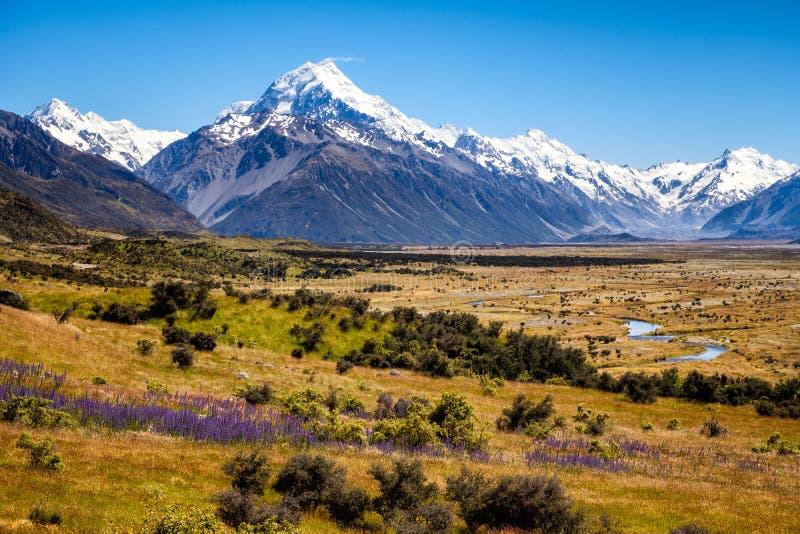 Piękny krajobrazowy widok pasmo górskie i MtCook osiągamy szczyt, Nowa Zelandia fotografia royalty free
