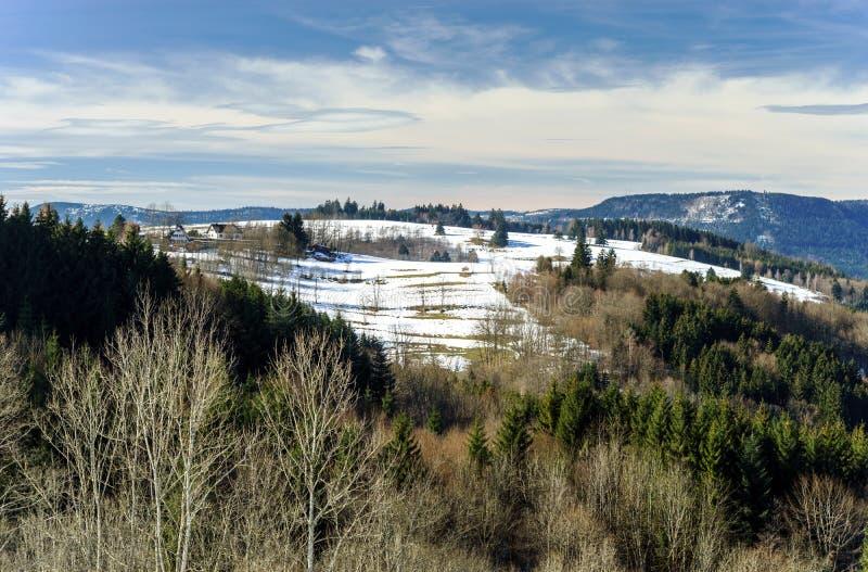 Piękny krajobrazowy widok zima las fotografia royalty free