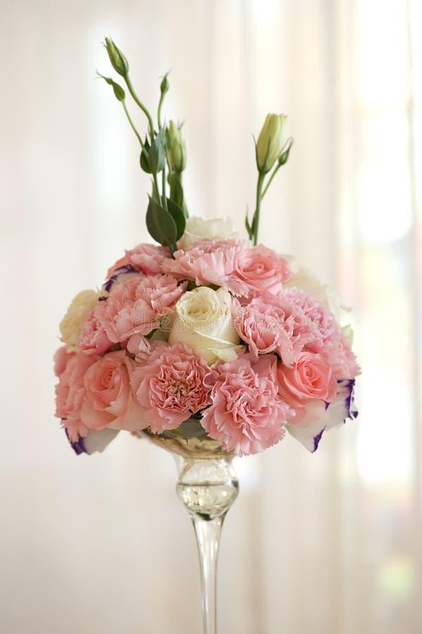 piękny kwiat wzrastał fotografia royalty free