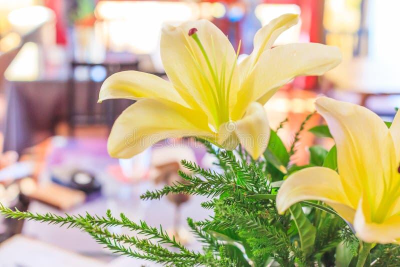 Piękny Kwitnący Żółty lelui Lilium, Świeży Naturalny Kolorowy kwiatu tło Kwiaciarnia, Wewnętrzna dekoracja, Kwiecisty bu obrazy stock