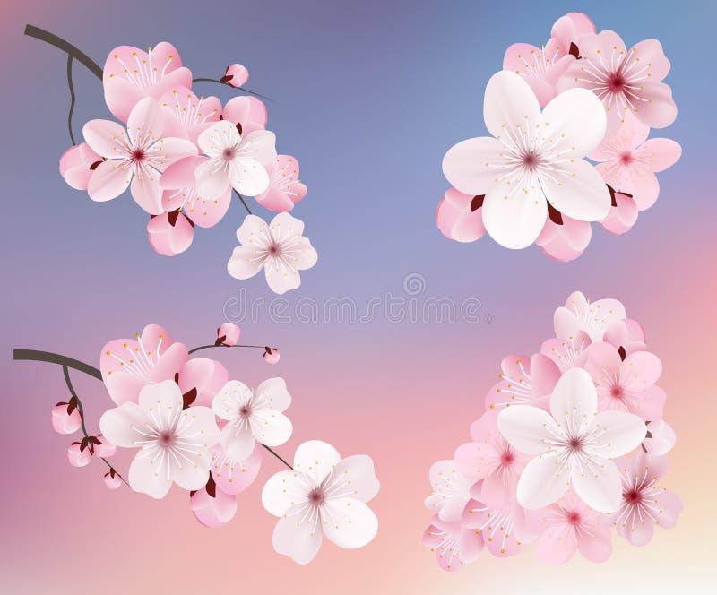 Piękny kwitnie zmrok i światło - różowy Sakura kwitnie Set realistyczne kwiatonośne cerry gałąź również zwrócić corel ilustracji  royalty ilustracja