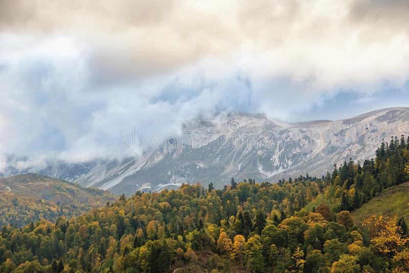 Piękny las w górach w jesieni zdjęcia royalty free