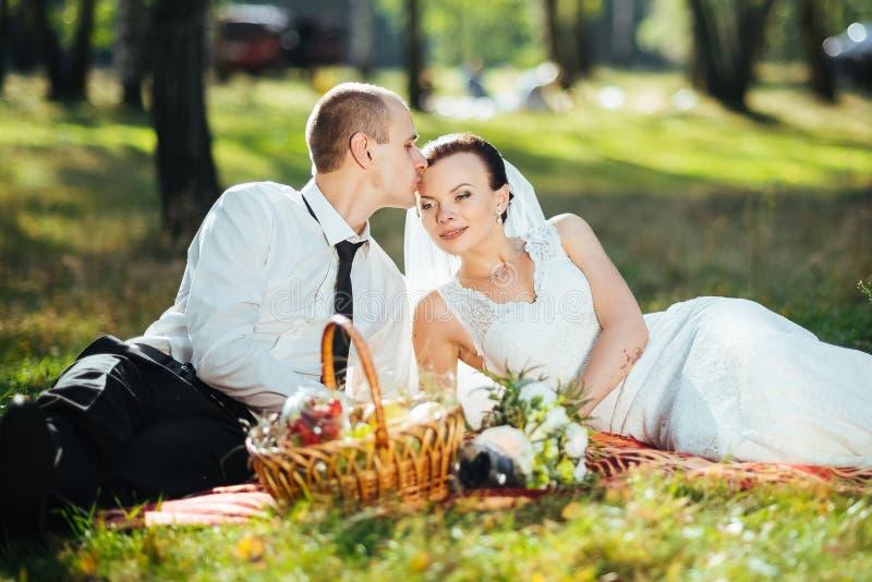 Piękny lato ślubu spacer na naturze zdjęcie stock