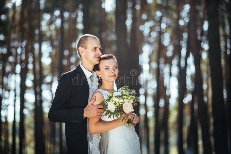 Piękny lato ślubu spacer na naturze fotografia stock
